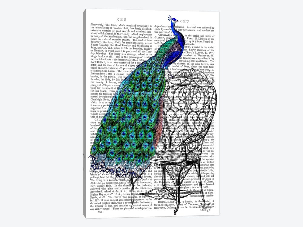 Peacock On Chair by Fab Funky 1-piece Canvas Artwork