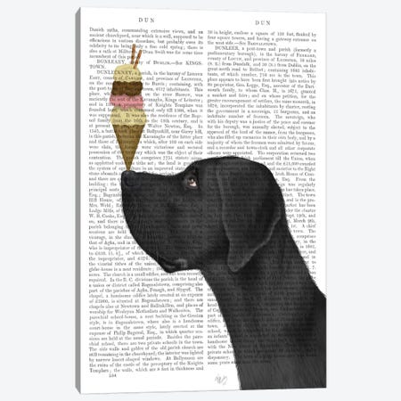 Great Dane, Black, Ice Cream, Print BG Canvas Print #FNK674} by Fab Funky Canvas Wall Art