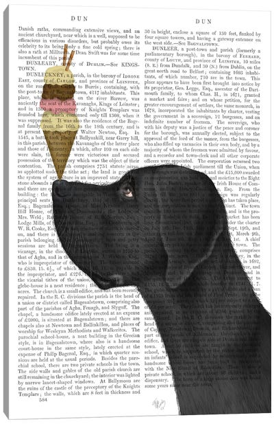 Great Dane, Black, Ice Cream, Print BG Canvas Art Print