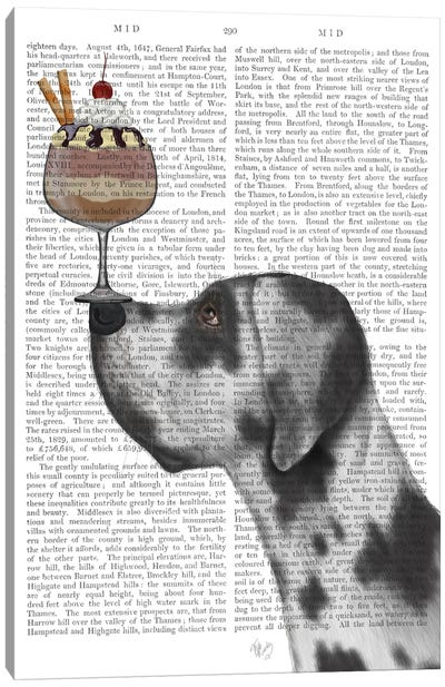 Great Dane, Harlequin, Ice Cream, Print BG Canvas Art Print
