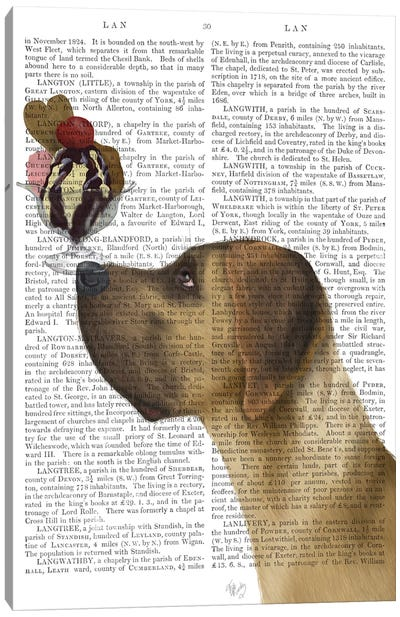 Great Dane, Tan, Ice Cream, Print BG Canvas Art Print