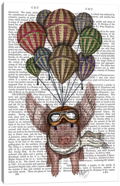 Pig And Balloons Canvas Print #FNK67