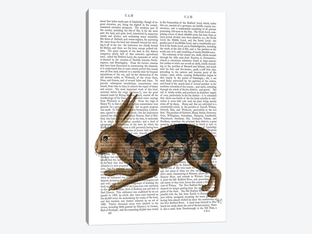 Hare and Black Leaves by Fab Funky 1-piece Canvas Art