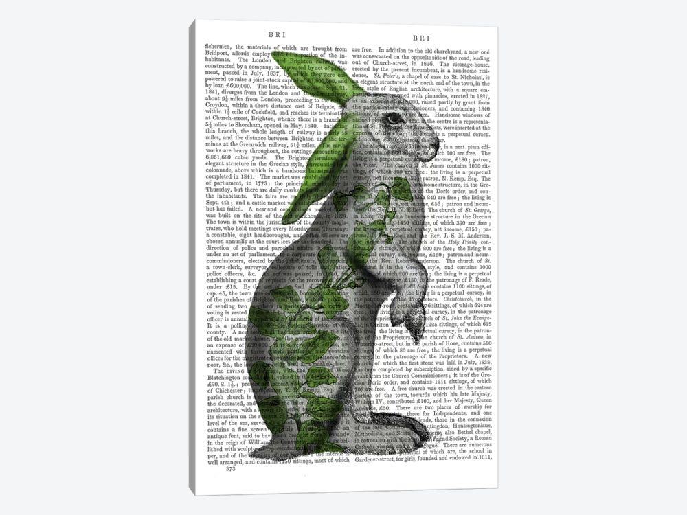 Hare with Green Ears by Fab Funky 1-piece Canvas Print