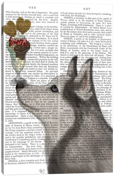 Husky Ice Cream, Print BG Canvas Art Print