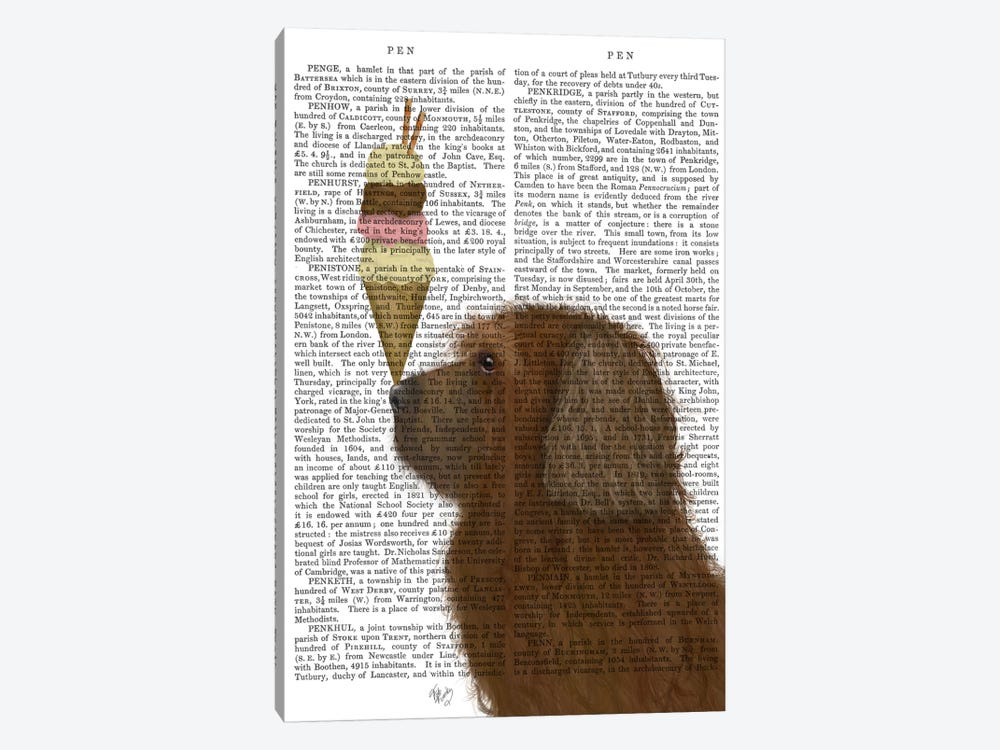 Labradoodle, Brown, Ice Cream, Print BG by Fab Funky 1-piece Canvas Wall Art