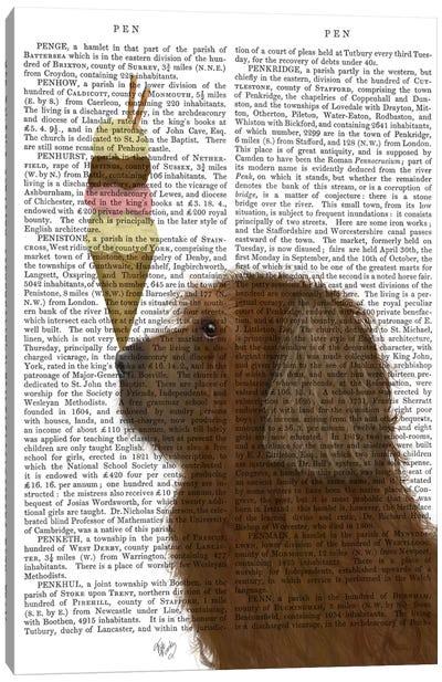 Labradoodle, Brown, Ice Cream, Print BG Canvas Art Print