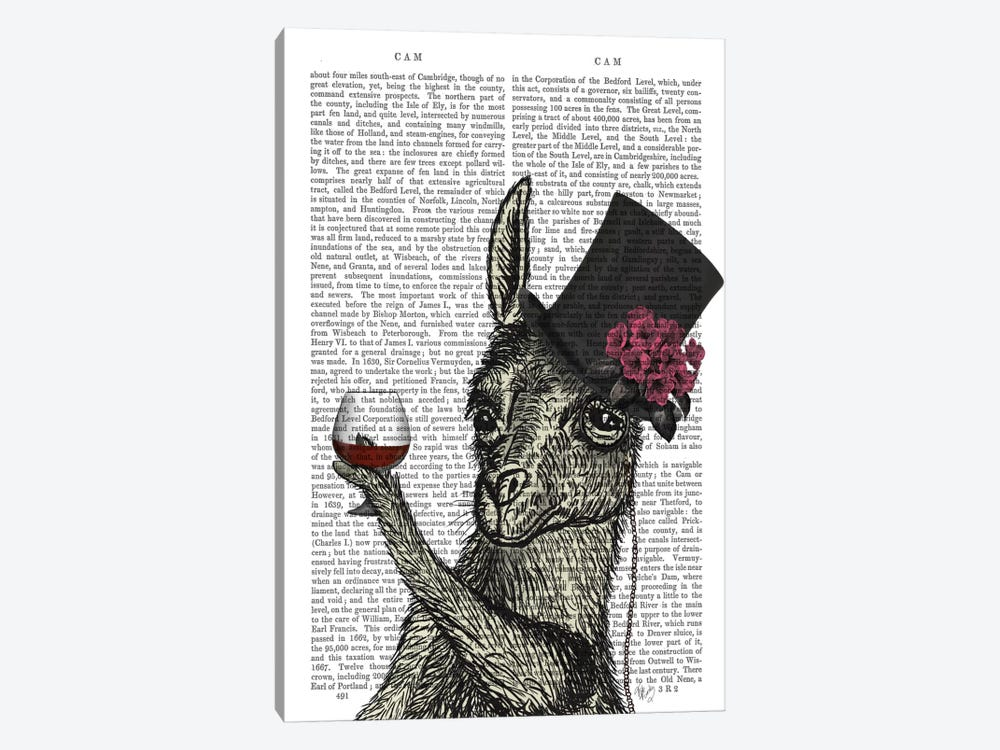 Llama Lush II, Print BG by Fab Funky 1-piece Canvas Art