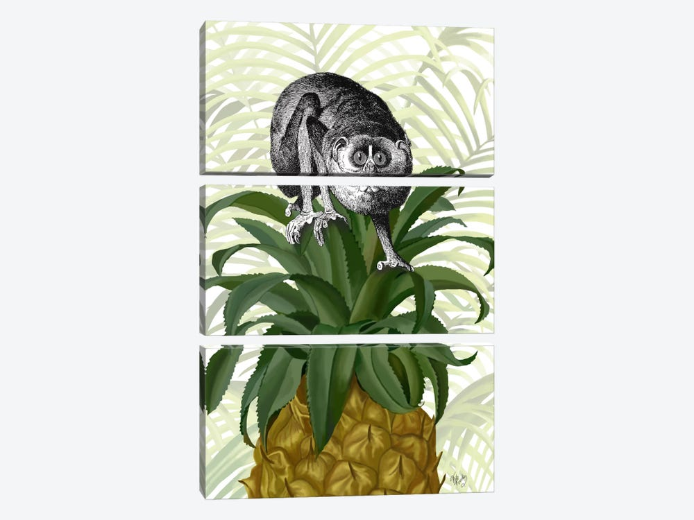 Loris on Pineapple by Fab Funky 3-piece Canvas Art Print