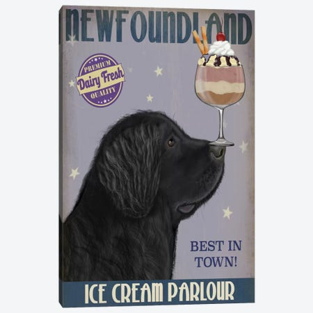 Newfoundland Ice Cream Canvas Print #FNK717} by Fab Funky Canvas Print