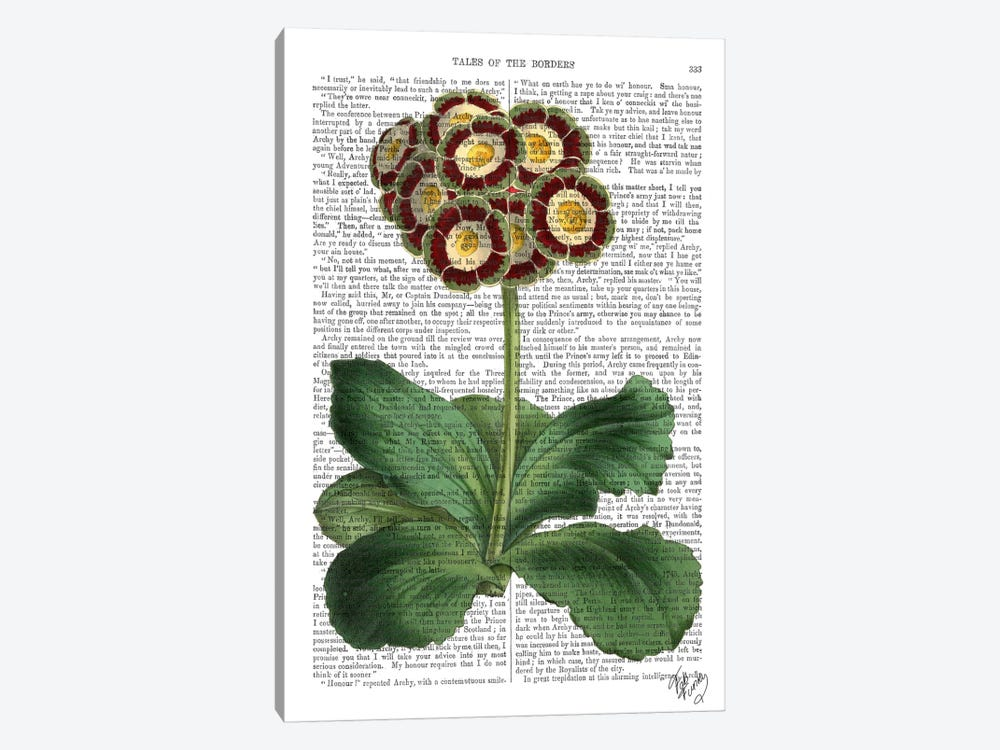 Primula Auricula by Fab Funky 1-piece Canvas Wall Art