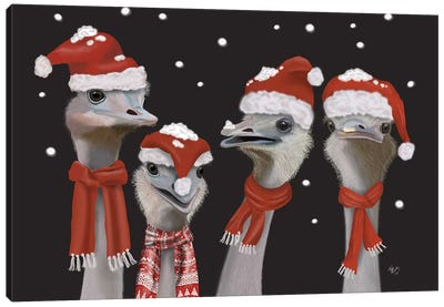 Ostrich, Christmas Gals Canvas Art Print