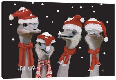 Ostrich, Christmas Gals Canvas Art Print