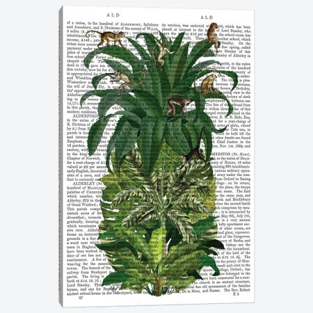 Pineapple, Monkeys, Print BG Canvas Print #FNK740} by Fab Funky Canvas Print