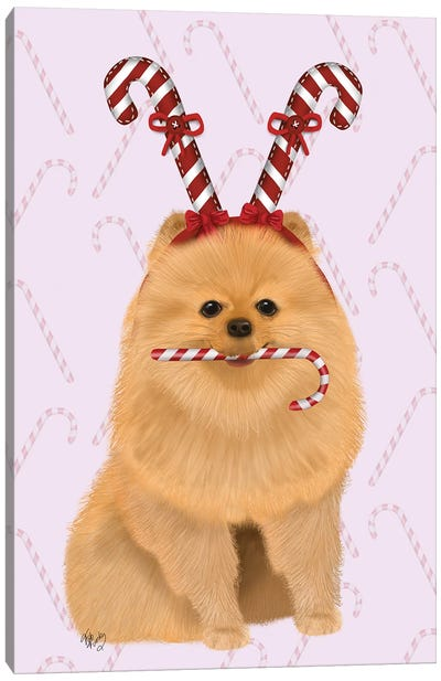 Pomeranian and Candy Canes Canvas Art Print