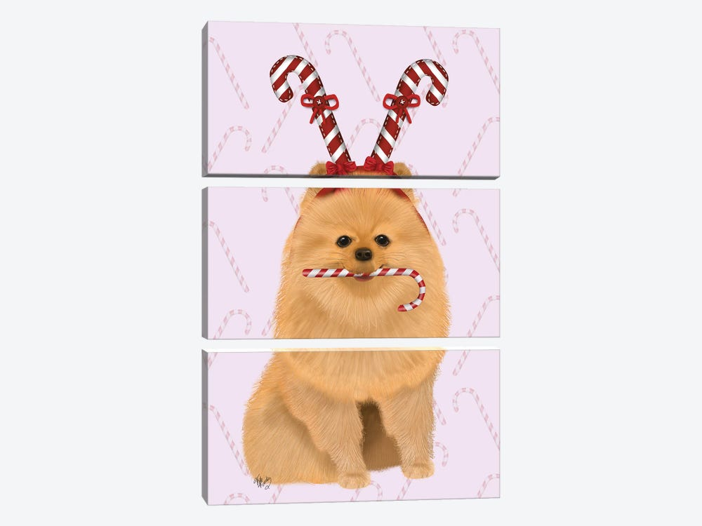 Pomeranian and Candy Canes by Fab Funky 3-piece Canvas Print
