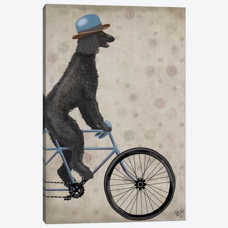 Poodle on Bicycle, Black Canvas Print #FNK749} by Fab Funky Canvas Art Print