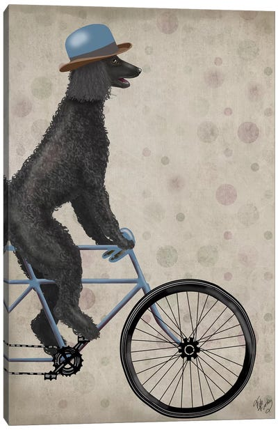 Poodle on Bicycle, Black Canvas Art Print