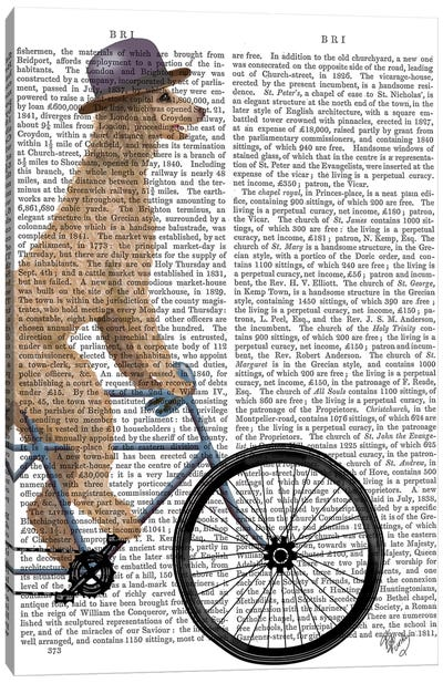 Poodle on Bicycle, Cream, Print BG Canvas Art Print