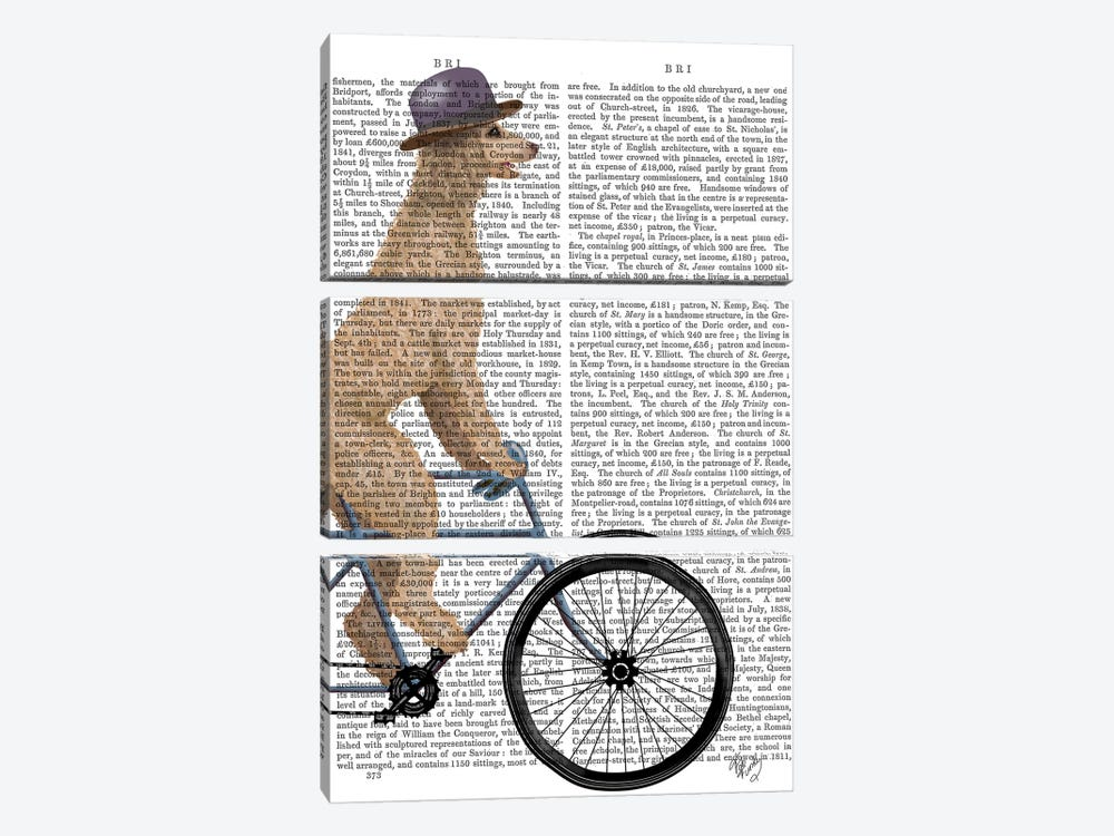 Poodle on Bicycle, Cream, Print BG by Fab Funky 3-piece Canvas Artwork