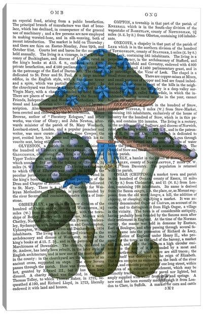 Psychedelic Mushrooms I Canvas Art Print