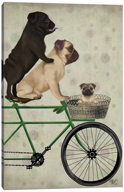 Pugs on Bicycle Canvas Art Print