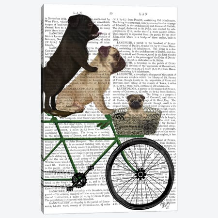 Pugs on Bicycle, Print BG 3-Piece Canvas #FNK766} by Fab Funky Canvas Art