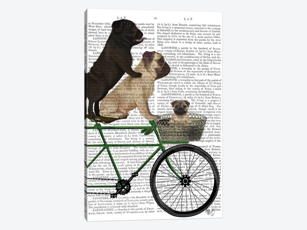 Pugs on Bicycle, Print BG by Fab Funky 1-piece Canvas Print