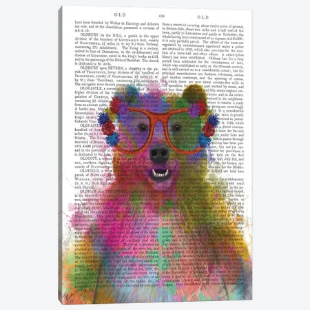 Rainbow Splash Bear, Print BG Canvas Print #FNK768} by Fab Funky Canvas Art Print