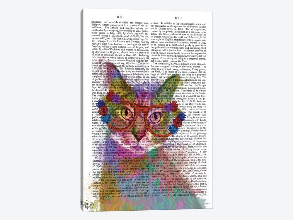 Rainbow Splash Cat I, Print BG by Fab Funky 1-piece Canvas Wall Art