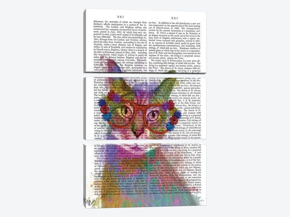 Rainbow Splash Cat I, Print BG by Fab Funky 3-piece Canvas Artwork