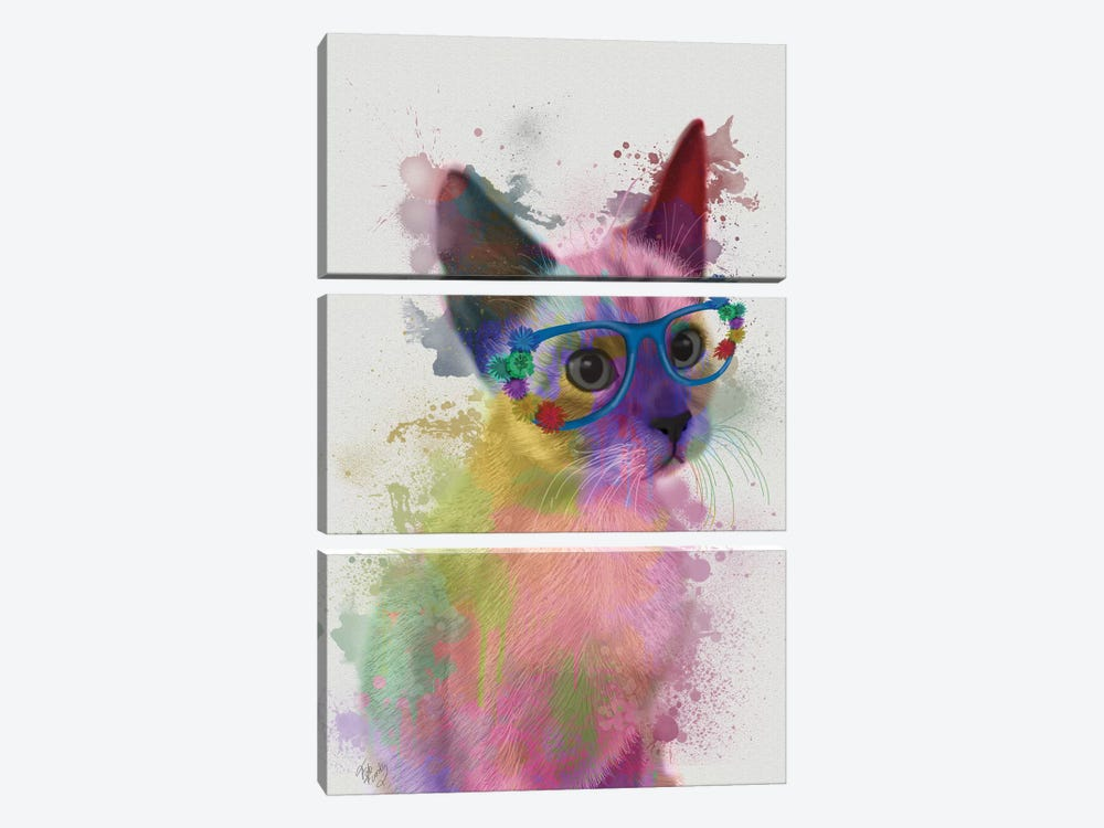 Rainbow Splash Cat II by Fab Funky 3-piece Canvas Art Print