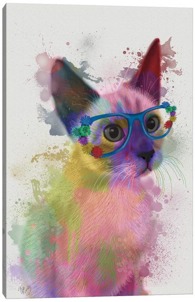 Rainbow Splash Cat II Canvas Art Print