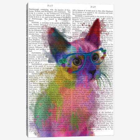Rainbow Splash Cat II, Print BG Canvas Print #FNK772} by Fab Funky Canvas Art