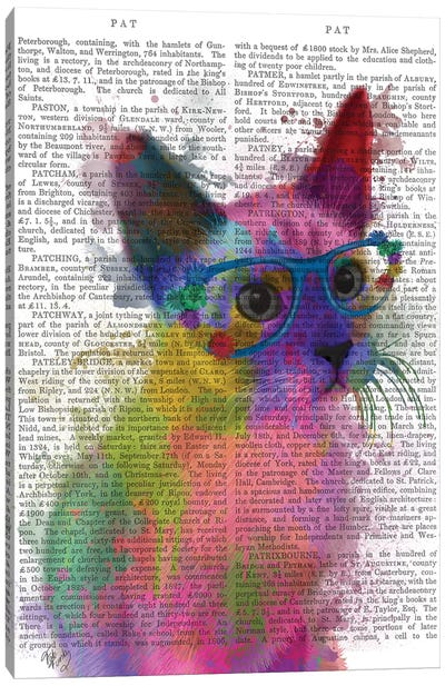 Rainbow Splash Cat II, Print BG Canvas Art Print