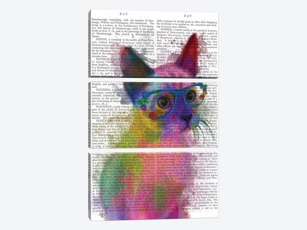 Rainbow Splash Cat II, Print BG by Fab Funky 3-piece Canvas Art