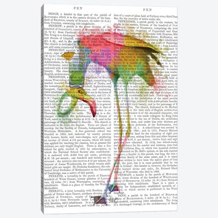 Rainbow Splash Flamingo IV Canvas Print #FNK788} by Fab Funky Art Print