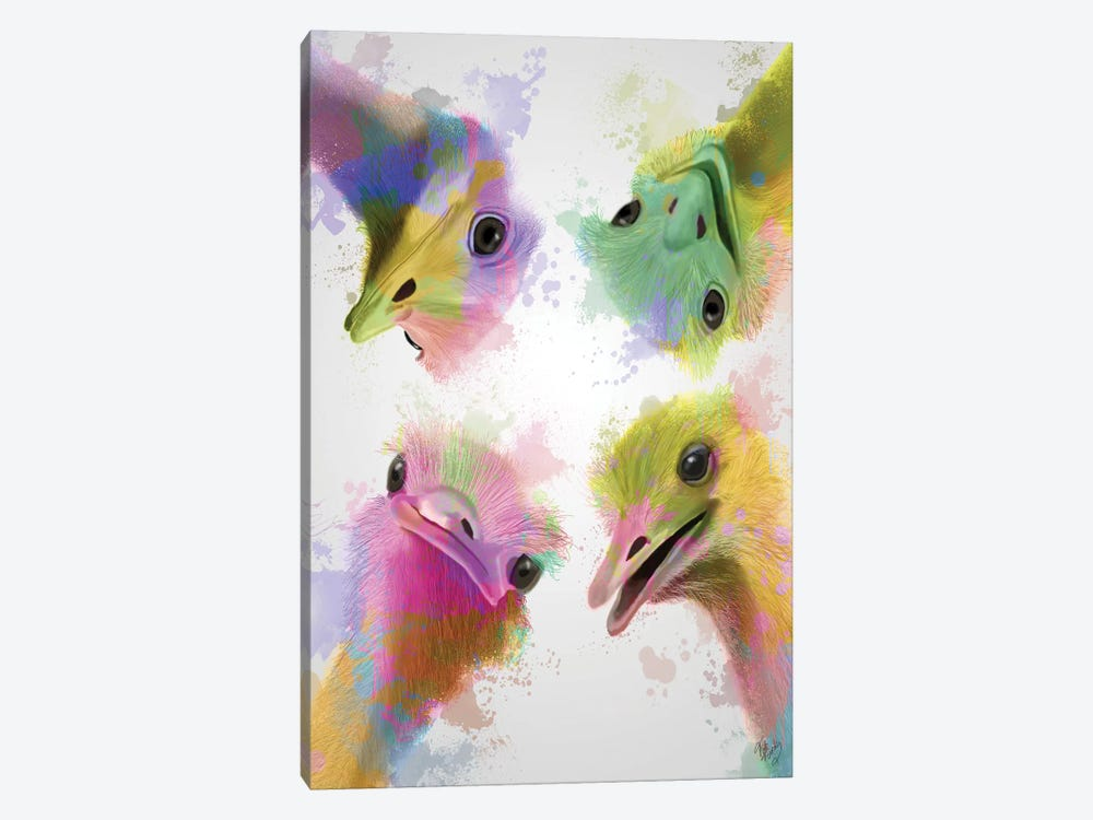 Rainbow Splash Four Ostriches by Fab Funky 1-piece Canvas Wall Art