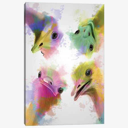 Rainbow Splash Four Ostriches Canvas Print #FNK790} by Fab Funky Canvas Wall Art