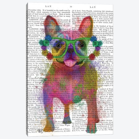 Rainbow Splash French Bulldog, Full, Print BG Canvas Print #FNK796} by Fab Funky Canvas Print