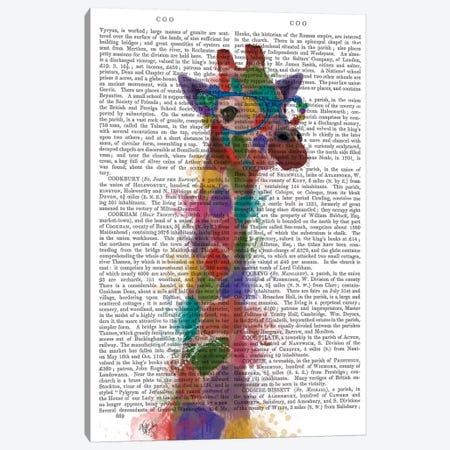 Rainbow Splash Giraffe II, Print BG Canvas Print #FNK802} by Fab Funky Canvas Wall Art
