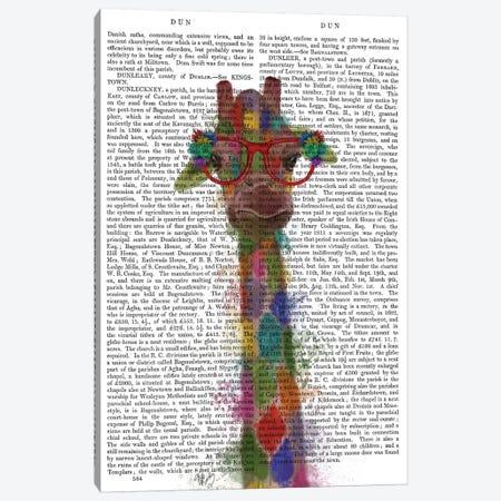 Rainbow Splash Giraffe III, Print BG Canvas Print #FNK804} by Fab Funky Canvas Print