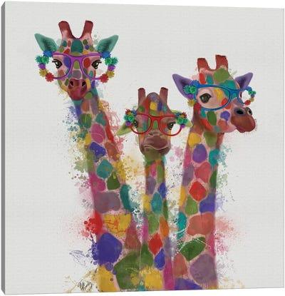 Rainbow Splash Giraffe Trio Canvas Art Print