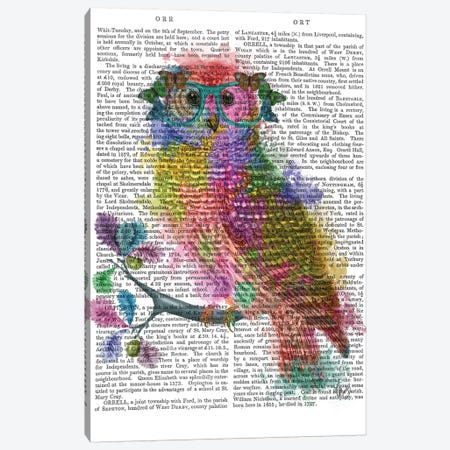 Rainbow Splash Owl, Print BG Canvas Print #FNK808} by Fab Funky Canvas Artwork