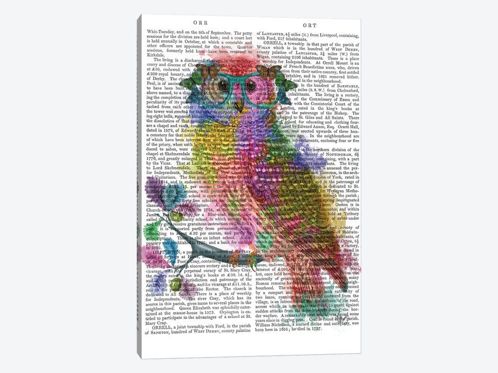 Rainbow Splash Owl, Print BG by Fab Funky 1-piece Art Print