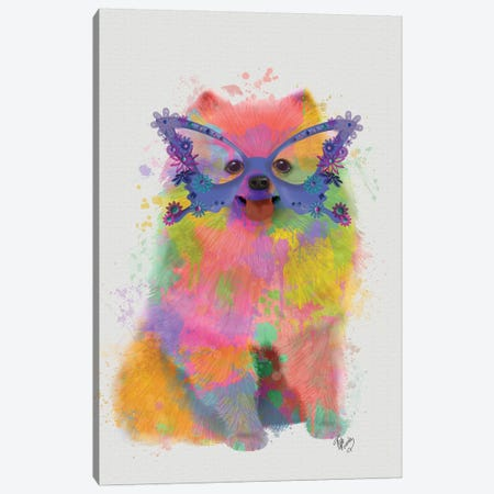 Rainbow Splash Pomeranian Canvas Print #FNK809} by Fab Funky Canvas Artwork