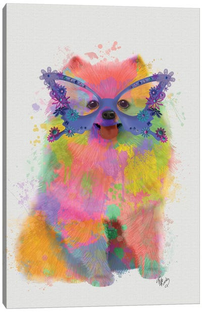 Rainbow Splash Pomeranian Canvas Art Print