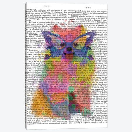 Rainbow Splash Pomeranian, Print BG Canvas Print #FNK810} by Fab Funky Art Print