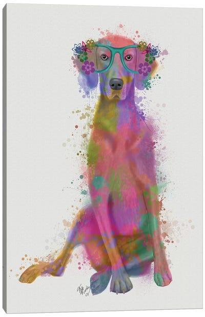 Rainbow Splash Weimaraner, Full Canvas Art Print