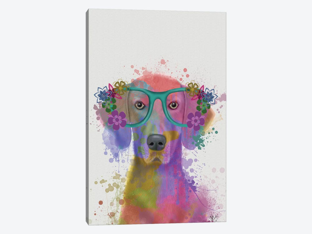 Rainbow Splash Weimaraner, Portrait by Fab Funky 1-piece Canvas Print